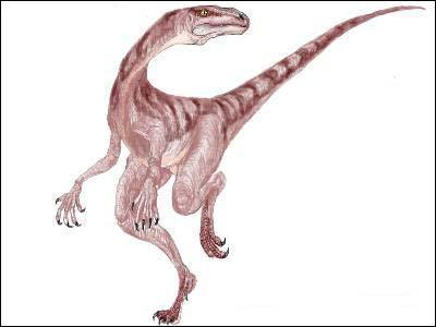 Qui est ce dinosaure ?