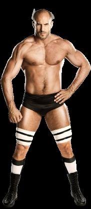 Superstars et divas de SmackDown (Part 1)