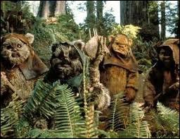 Dans quel épisode de la saga  La Guerre des Étoiles  fait-on connaissance avec les Ewoks ?