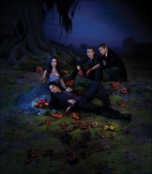 Qui n'a jamais joué dans  The Vampire Diaries  ?