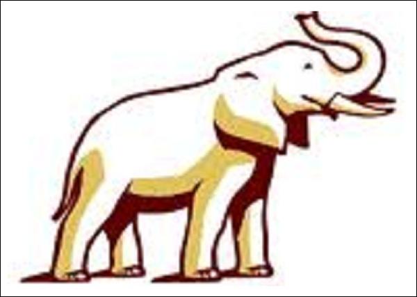 Grey Elephant Head Logo