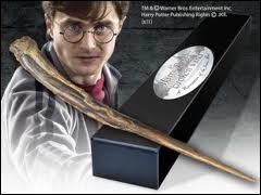 Avec le bois de quel arbre est faite la baguette de Harry ?