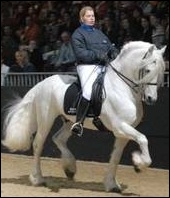 Quelle est la race de ce cheval très rare de cette robe ?