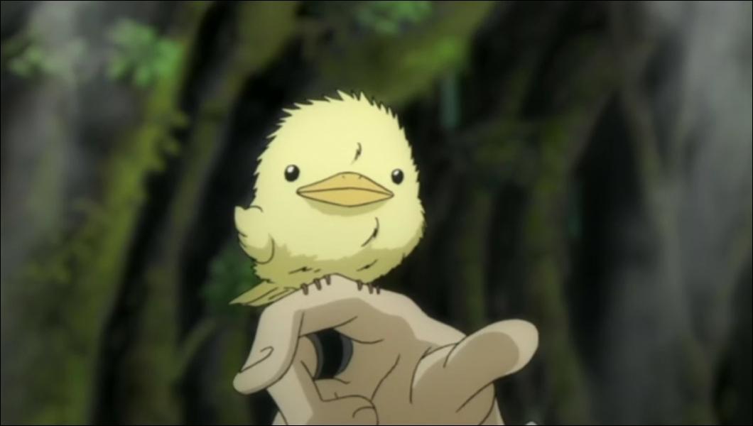 Comment s'appelle son oiseau ?