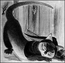 Dans  Le roman de Renart , comment s'appelait le chat ?