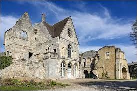 Dans quelle ville, considérée comme le berceau de la dynastie, Hugues Capet reçut-il le titre de Roi des Francs ?