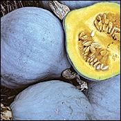 Voici un très joli aliment à la peau bleue et à la chair orangée : quel nom porte-t-il ?