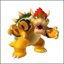 Et celui-ci, n'est-ce pas celui qui ne pense qu'à vaincre Mario et à enlever la princesse Peach ? Si, c'est lui, mais comment s'appelle-t-il ?