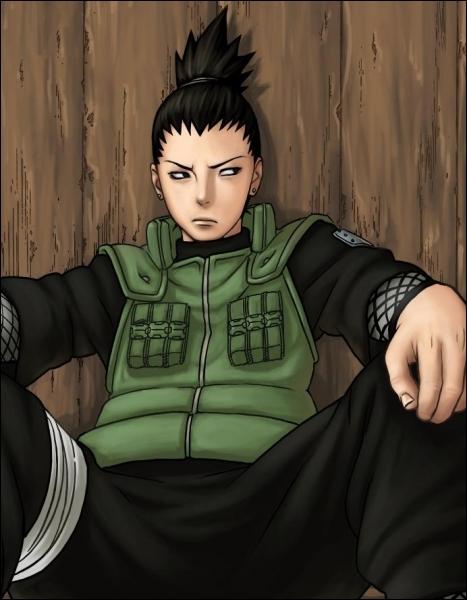 Quel est le pouvoir de Shikamaru ?