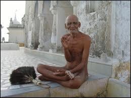 L'ermite qui pratique un ensemble d'exercices à visée spirituelle et qui a une vie très saine est... . .