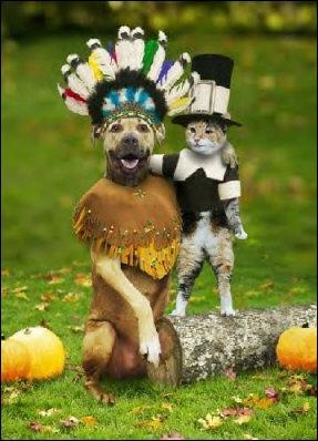 Sur cette photo, on voit un renard qui est déguisé en indien !