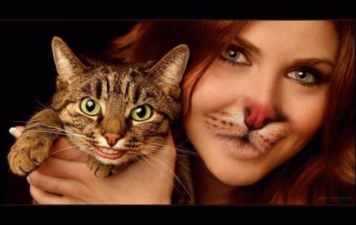Cet auteur-compositeur nous dit : Elle cherche des puces à son chat !