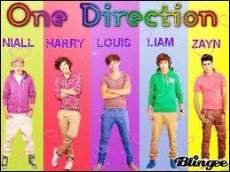 Qui a eu l'idée du nom  One Direction  ?
