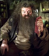 Comment s'appelle ce géant qui est l'ami de Harry Potter ?