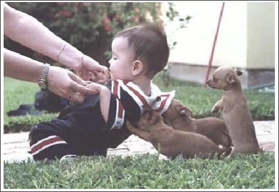 Certains bébés peuvent commencer à marcher à ...
