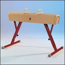 Le cheval d'arçon est un agrès de gymnastique artistique...