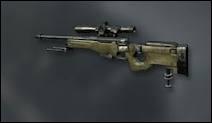 Quel est ce sniper ?