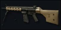 Quel est ce fusil-mitrailleur ?