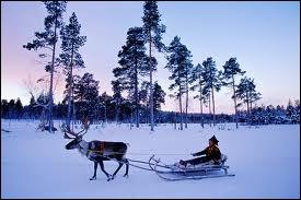 Et si vous voyez écrit  Suomi , de quel pays nordique s'agit-il ?