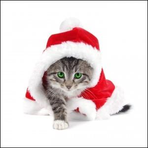 Quelle était la couleur du père Noël à l'origine ?