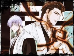 Gin a trahi le Gotei 13 car il avait le même but que Aizen : diriger le Monde.