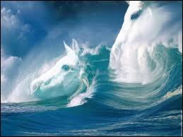 Un cheval de mer c'est ... .