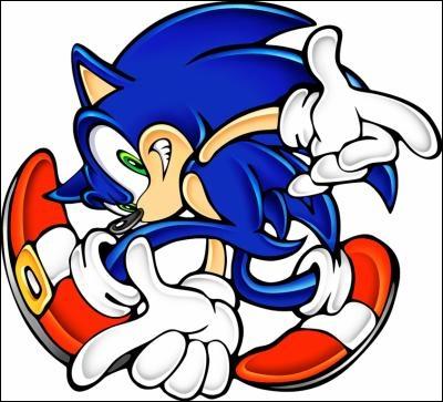 Comment s'appelle le thème de Sonic dans  Sonic Adventure  ?
