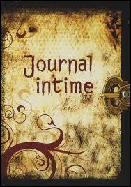 Où Elena a-t-elle écrit la première fois dans son journal intime ?