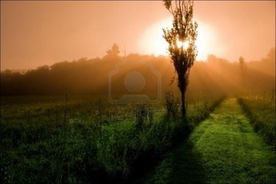 Mais quand le matin / Je vois le soleil, le matin !