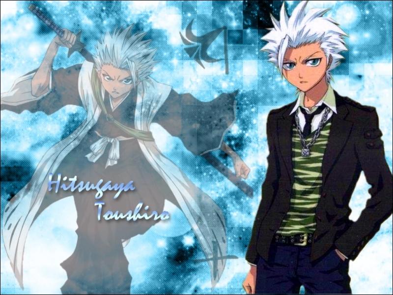 Quelle est la couleur des cheveux de Toshiro ?