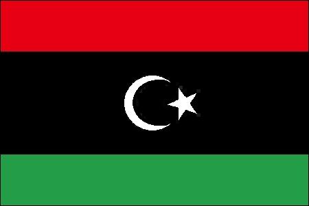 Jusqu'en 2011, le drapeau de ce pays était tout vert.