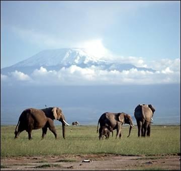 Où se situe ce monument ? le Kilimandjaro