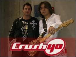 Le groupe Crush 40 a participé à la totalité des musiques de Sonic. Vrai ou faux ?