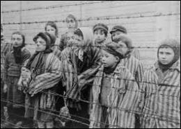 La population juive en Europe était estimée à 9 millions de personnes avant-guerre. Combien furent victimes de la Shoah ?