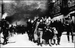 Quel nom les historiens ont-ils donné au pogrom organisé contre les Juifs qui se déroula dans la nuit du 9 novembre au 10 novembre 1938 , prélude annonciateur de la Shoah ?