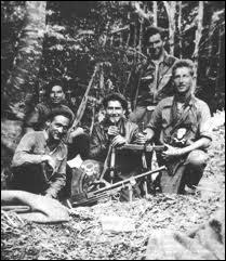 Comment a-t-on appelé les combattants de la résistance intérieure, cachés dans les montagnes et les forêts ?