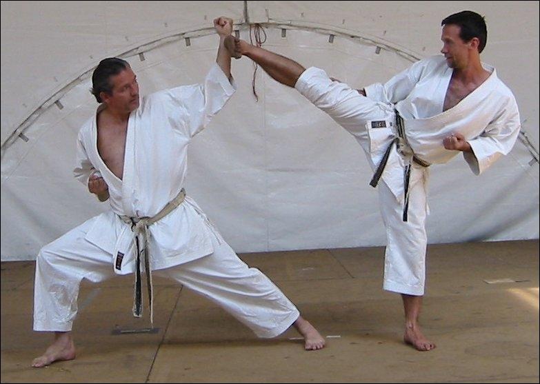 En quelle année, la méthode le  Shotokan  s'est-elle développée ?
