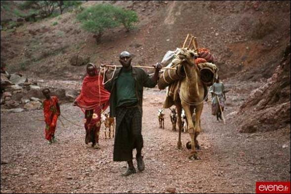 Dans ce film de Marion Hansel, la sècheresse, le désert, la pauvreté, la guerre civile menacent un village peul et poussent à l'exode.