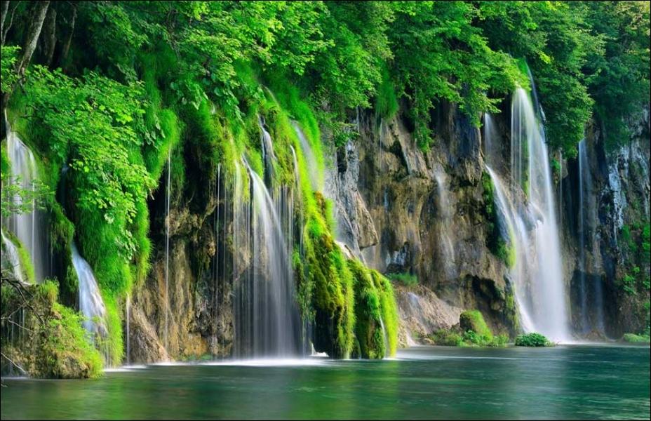 C'est dans le Parc national de Plitvice, en Croatie, que vous le verrez déambuler !