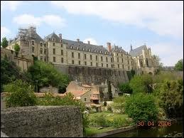 Terminons ce petit voyage dans les Deux-Sèvre par la ville de Thouars et ses habitants répondant au nom de ...