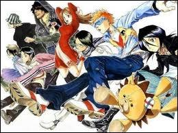 Shinigami et Hollow s'affrontent dans ce manga.