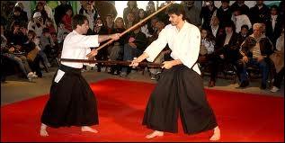Quel est le nom de ce sport de combat ?