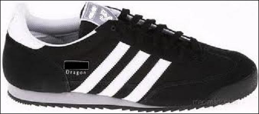 Quelle marque a créé un modèle de chaussures  Dragon  ?