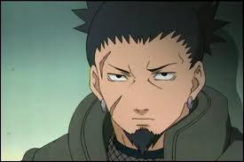 Qui s'opposera à l'amour entre Temari et Shikamaru ?