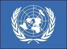 Une résolution vise à créer une organisation internationale pour la sauvegarde de la paix et de la sécurité. Il s'agit de la future...