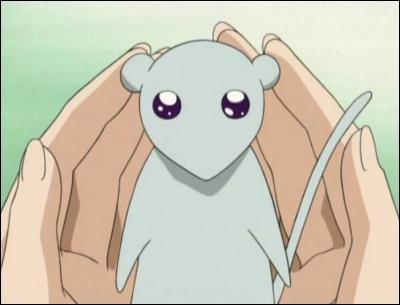 Pour quoi Yuki repousse-t-il les filles ?