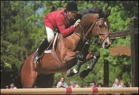 Et celle de ce cheval qui mesure 1m68 ?