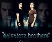 Que sont Stefan et Damon ?