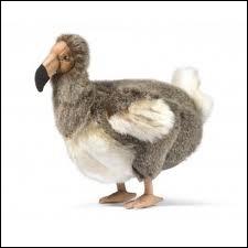 Le Dodo est un Oiseau, ( il y a plusieurs possibilités )