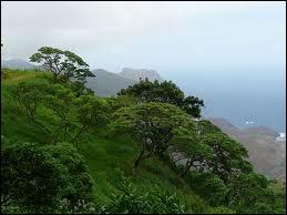 Napoléon n'a pas eu droit à une île de rêve : Sainte-Hélène se situe...